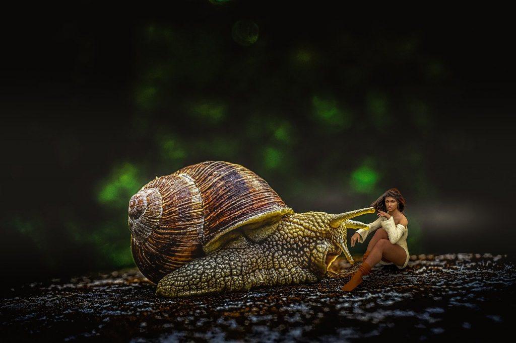 snail, woman, surreal_picfixs