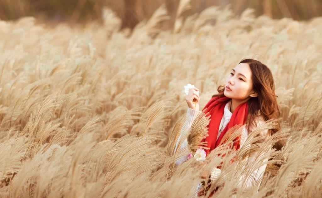 woman, reed, field-1107329.jpg